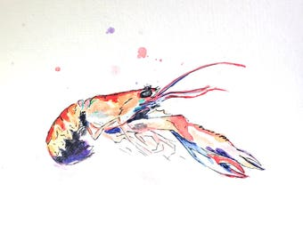 Crawfish Watercolor