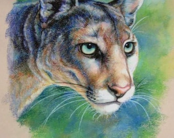 Florida Panther; Puma concolar coryi; Puma concolar couguar; Florida wildlife; Florida artist; Endangered panther; panther art; puma art