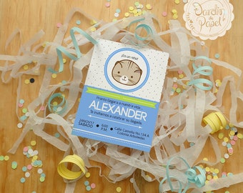 "INVITATION for BABY SHOWER/invitation of child, cat, child, digital/print in house/Digital ""Baby Boy"""