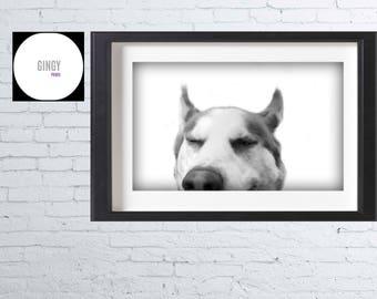 Husky Love Wall Art Printable