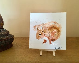 SQUIRREL painting, squirrel art, watercolour squirrel, perfect gift, squirrel lovers gift, 15cmx15cm painting, original watercolour painting