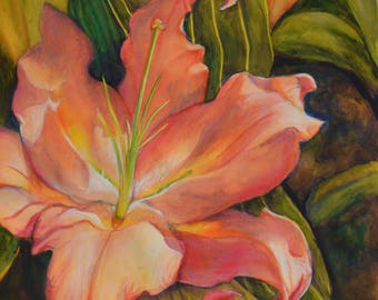 Pink Lily Watercolor Print