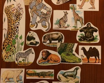 Vintage Exotic Animals paper ephemera pack (small)