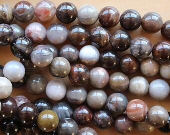 8mm Petrified Wood beads, full strand, natural stone beads, round, 80114