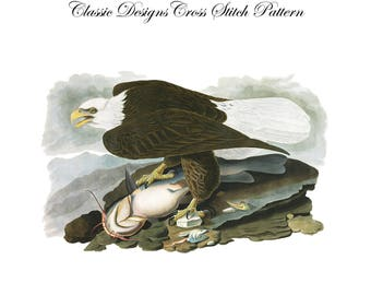 Audubon's Plate 31 White Headed Eagle Cross Stitch Pattern