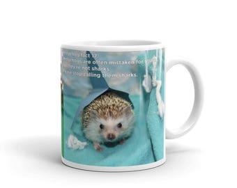 Hedgehog Mug | Hedgehog Facts Coffee Mug | Funny Hedgehog Gift Mug | Cute Hedgehog Custom Mug