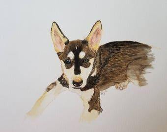 Puppy Penn