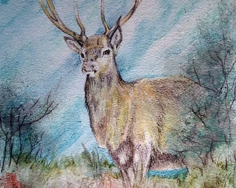 Majestic, painting of a Stag,a large original painting size 14 x 11 cream mount, free first class post, nature lovers, realistic, homes