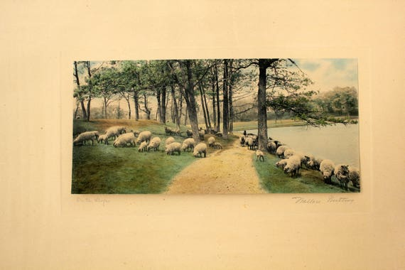Vintage Wallace Nutting Hand Colored Photo Print, On The Slope, Signed Sheep by Lake Path