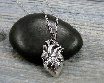 Anatomical Heart Necklace, Sterling Silver Anatomical Heart Charm on a Silver Cable Chain