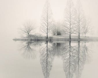 landscape photography, lake house art, lake house decor,  fog photography, fine art photography, tree photography, winter photography, print