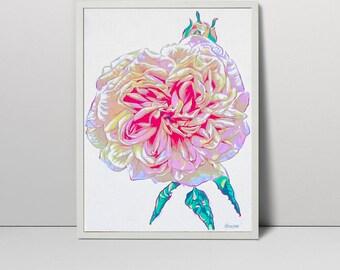 Pink rose art - flower serigraph - rose art - rose print  - rose painting - roses flowers  - floral art - pink print - floral art - summer