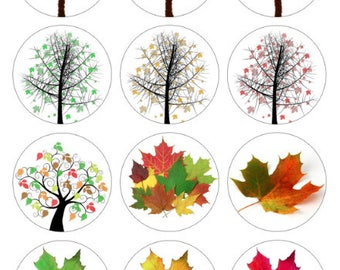 Fall Trees Printable 1-Inch Circles / Bottlecap Images / Autumn Changing Leaves / Digital Collage / Instant Download / Thanksgiving Season