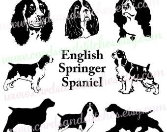 spaniel svg english spaniel svg springer spaniel svg digital cutting file cricut
