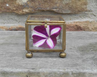 Vintage Brass and Etched Glass Display Box Miniature Case Hinged Lid Jewelry Ring Display Keepsake Case