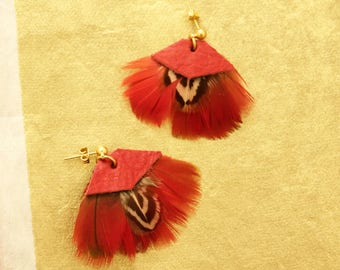 Earrings gold, leather, red, Parrot feathers