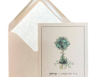 "Topiary Note Cards, Box of 8 w/ lined envelopes,Ivy,Boxwood,Greeting Cards, Nature, Garden, Gifts, Any Occasion, Blank Inside,  4.25"" X 5.5"""
