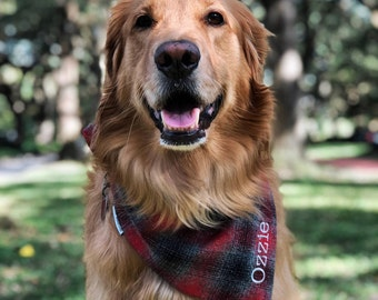 Personalized Grey and Red Plaid Dog Bandana || Flannel Pet Scarf || Personalized Puppy Gift by Three Spoiled Dogs