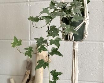Macrame pot hanger, macrame pot holder, plant hanger, wall plant hanger.
