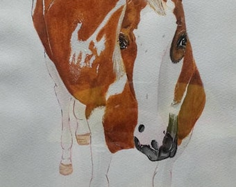Watercolour - Horse Portraits (Custom made)