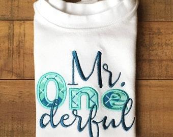 Boys First Birthday Outfit - Boys First Birthday Shirt - Mr Onederful Shirt - Plaid Birthday Shirt