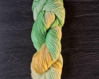 Hand Dyed, hand painted Yarn -  Naked Chameleon - OG Sport