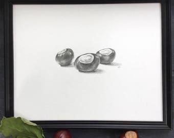 Three Chestnuts - original drawing