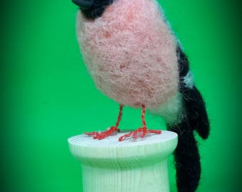 Needlefelt bull finch  - one of a kind - gift item