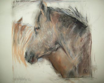 Young horse head drawing - original pastel and charcoal