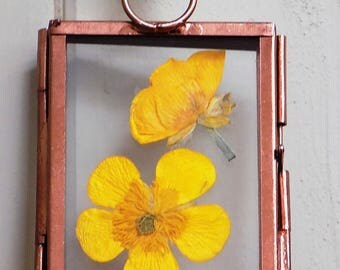 Mini Pressed Flower Picture: 'Buttercup'. Hand-made, unique pressed flower art.