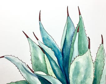 Blue Agave, original watercolor, 9x13 inches, succulent