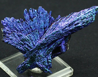 Aqua Aura Black Kyanite Crystals, Brazil