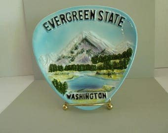Collector Plate, Evergreen State, Washinton, Rare, Vintage, Beautiful