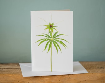 Greetings Card - Paris - Floral