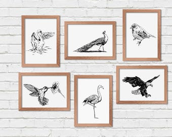 Birds Printable Art, Set of 6, Printable Wall Art, Transfer Images, Coloring Page, Craft Supplies, Nature Prints, Flamingo Print, Bald Eagle