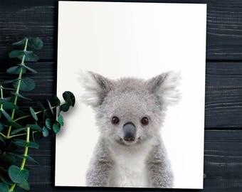 Koala print, PRINTABLE art, Nursery animals, Animal prints, Baby animals, Nursery printables, Nursery wall art, Nursery decor, Koala art