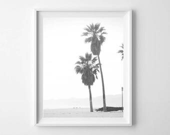 Palm Trees Print, Beach Decor, Tropical Wall Art, Large Printable Poster, Black White Photography, Palm Trees Print, Tropical Print