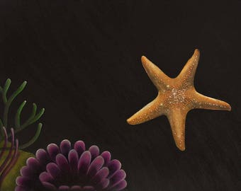 Starfish glitters in the darkness of the deep ocean