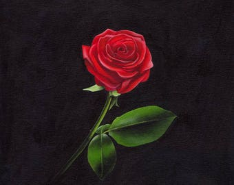 Painting, Red Rose on black background