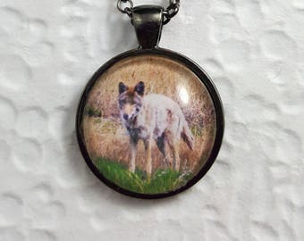 Coyote Necklace With Circle Glass Cabochon Gunmetal Finish Wildlife Necklace Wildlife Jewelry Photo Jewelry Coyote Lovers Coyote Necklace