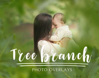 30 Tree branch photo overlays, photoshop overlays, png overlays, summer overlays, spring overlays