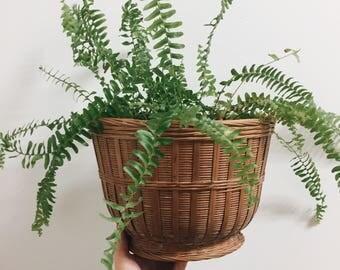 Large Vintage Plant Basket / Large Woven Basket / Vintage Wicker Plant Basket / Boho Decor