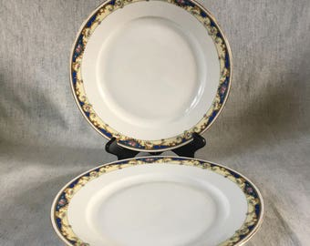 Vintage Royal Epiage Union K Czechoslovakia Blue and Pink Roses Dinner Plates, Set of 2
