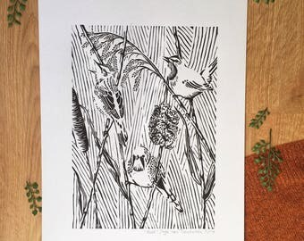 Reed blockprint