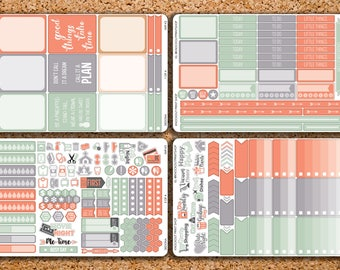 225 Sticker 4 Sheet SEDONA Sampler Kit for 2017 inkWELL Press Planner, Erin Condren IWP-K5