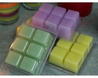 Lot of 20 Various Soy Wax Melts Tarts with FREE Shipping