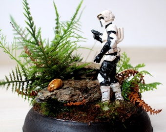 Scout Trooper. Star wars mounted and painted