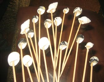 Twenty Seashell Long Toothpicks for Hors d'oeuvres/Sandwiches for that Speacial Seaside Party/Occasion/Event/Wedding