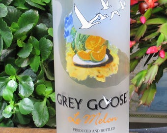 fun centerpiece housewarming gift idea grey goose vodka le melon vase fun friend gift drinking friend gift alcohol gift housewarming present