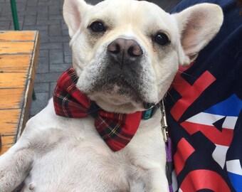 Tartan Dog Bow Tie, Plaid Bow Tie, Highlander Bow